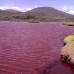 チリのカミナにある悪魔が棲む真っ赤な湖!湖が赤い理由とは?