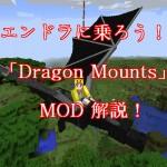 Dragon Mounts解説!エンドラの卵を孵化してお空の旅へ!